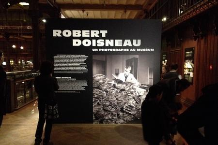 doisneau-musee-histoire-naturelle