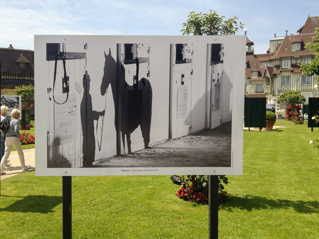 expo-deauville-scorcelletti